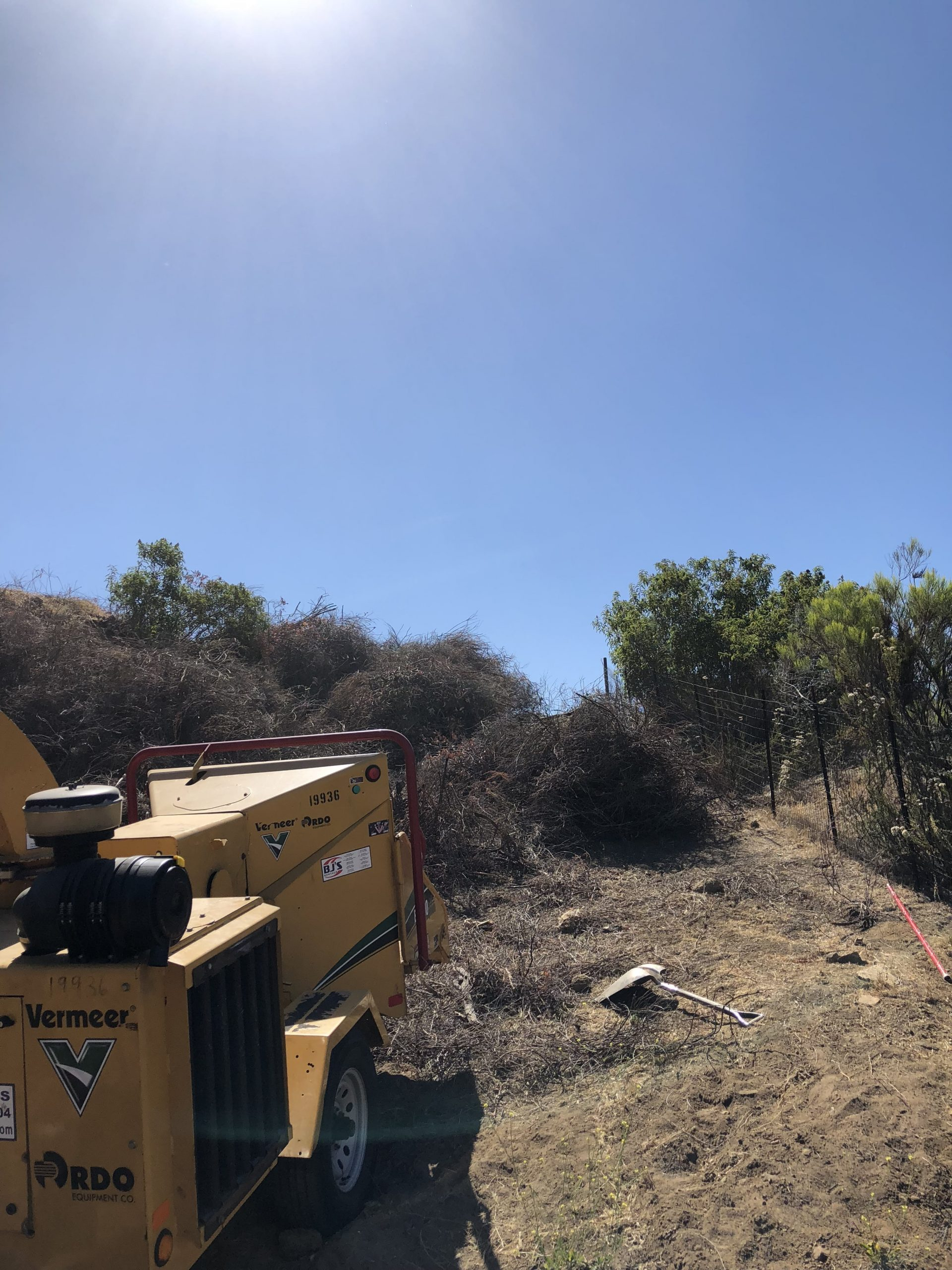 Highway commercial brush clearing